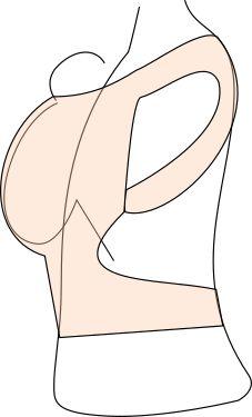 die C-Form: Die Wirbelsäule des Kindes ist gerundet und der Rücken wir nicht in eine aufrechte oder gar Hohlkreuzhaltung gezwungen